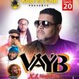 1 - Vayb - Theme